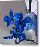 Blue Orchids At All Metal Print
