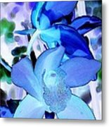 Blue Orchids Metal Print