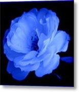 Blue Perfection Metal Print
