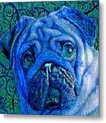 Blue Pug Metal Print