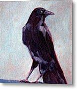 Blue Raven Metal Print