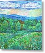 Blue Ridge Meadow Metal Print