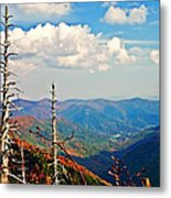 Blue Ridge Parkway Art-trees And Mountains Metal Print