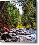 Blue River Metal Print by Sergio Aguayo
