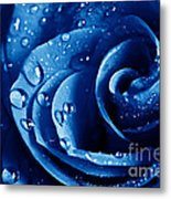 Blue Roses Metal Print by Boon Mee