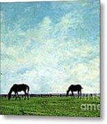 Blue Skies And Blue Grass Metal Print