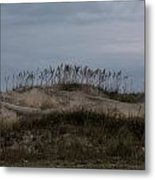 Blue Skies At The Dunes Metal Print