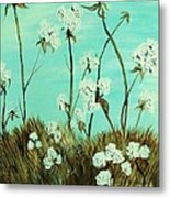 Blue Skies Over Cotton Metal Print