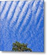 Blue Sky White Clouds Green Trees Metal Print