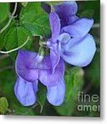 Blue Snail Vine Twins Metal Print