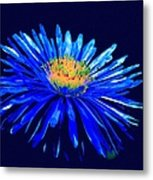 Blue Star 2 Metal Print