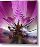 Blue Star Tulip Design Metal Print