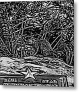 Blue Star Visitor Metal Print