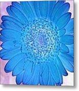 Blue Surprise Metal Print