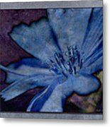 Blue Too Metal Print