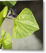 Blue Violet With Triangles Metal Print by Rebecca Sherman