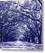 Blue World In Savannah Metal Print
