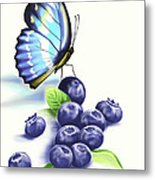 Blueberries And Butterfly Metal Print