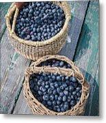 Blueberry Baskets Metal Print