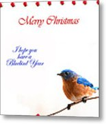 Bluebird Christmas Card Metal Print