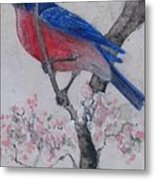 Bluebird In Cherry Blossoms Metal Print