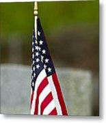 Bluebird Perched On American Flag Metal Print