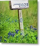 Bluebonnets And Mailbox Metal Print