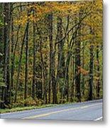 Blueridge Parkway Virginia Metal Print