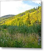 Bluff Overlooking Our Campsite By Stewart River Along Klondike Highway-yt Metal Print