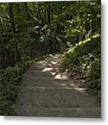 Bluff Trail  Metal Print