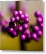 Blur Berries Metal Print