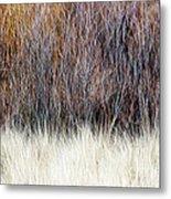 Blurred Brown Winter Woodland Background Metal Print