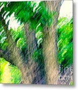 Blurred Pecan Metal Print