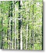 Blurred Trees Spring-1 Metal Print