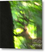 Blurry Buck Metal Print