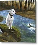 Bo At The Patapsco Metal Print
