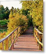 Boardwalk In A Forest, Magee Marsh Metal Print
