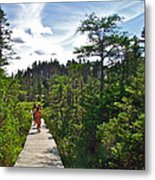 Boardwalk In Salmonier Nature Park-nl Metal Print
