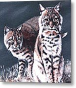 Bobcats In The Hood Metal Print by DiDi Higginbotham