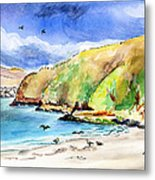 Bodega Head California Metal Print