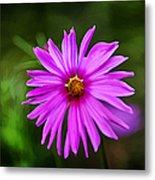 Bohemian Garden Pink Metal Print
