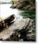 Bold And The Beautiful Metal Print