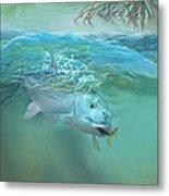 Bone Fish Metal Print