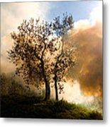 Bonfire And Olive Tree Metal Print