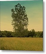 Bonner Springs Tree  Metal Print