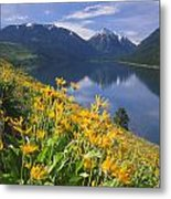 M-05921-bonneville Mountain Reflected In Wallow Lake Metal Print