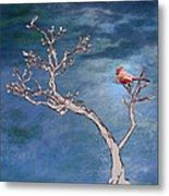 Bonsai Cardinal Metal Print