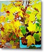 Bonsai Tree With Yellow Leaves Metal Print