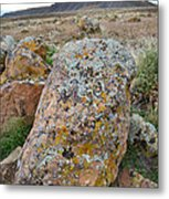 Bookcliffs 125 Metal Print