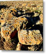 Bookcliffs 138 Metal Print
